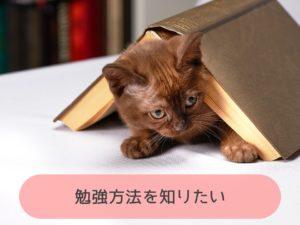 勉強方法を知りたい